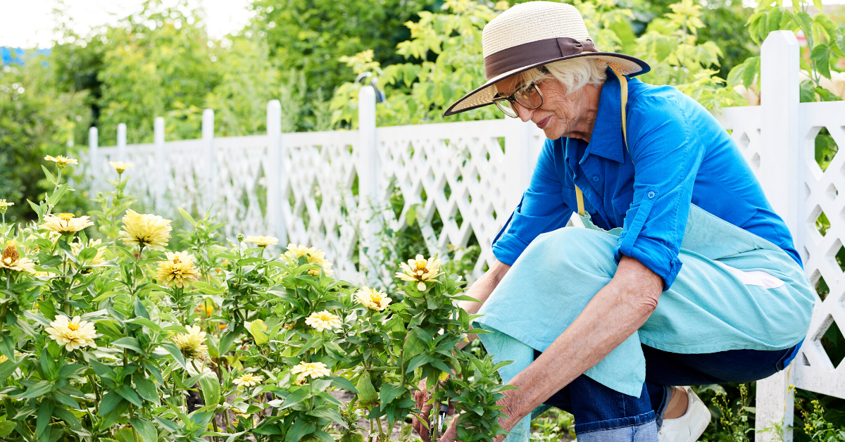The Benefits of Gardening for Seniors Blog Banner